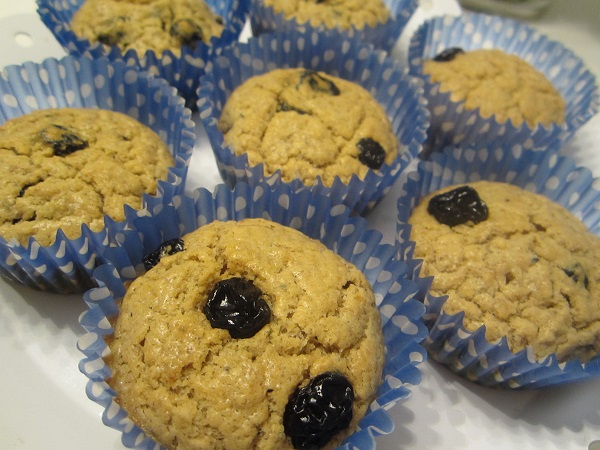 Sugar Free Blueberry Muffins