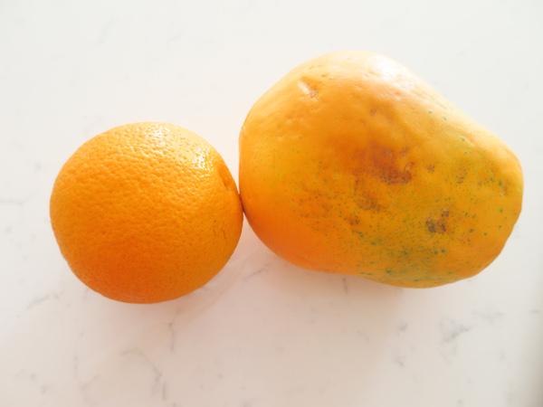Orange and Papaya