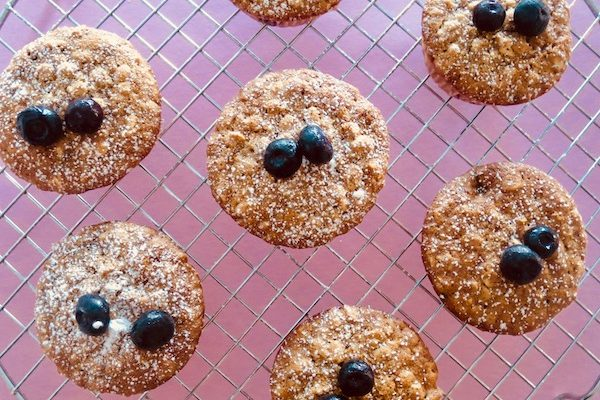 Blueberry and Oat Muffins